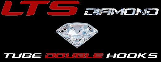 LTS double krok logo